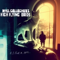 Cover: Noel Gallagher's High Flying Birds - If I Had A Gun...